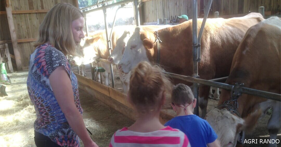 Maxime and Lucie together with their mother caress Pierre's cows
