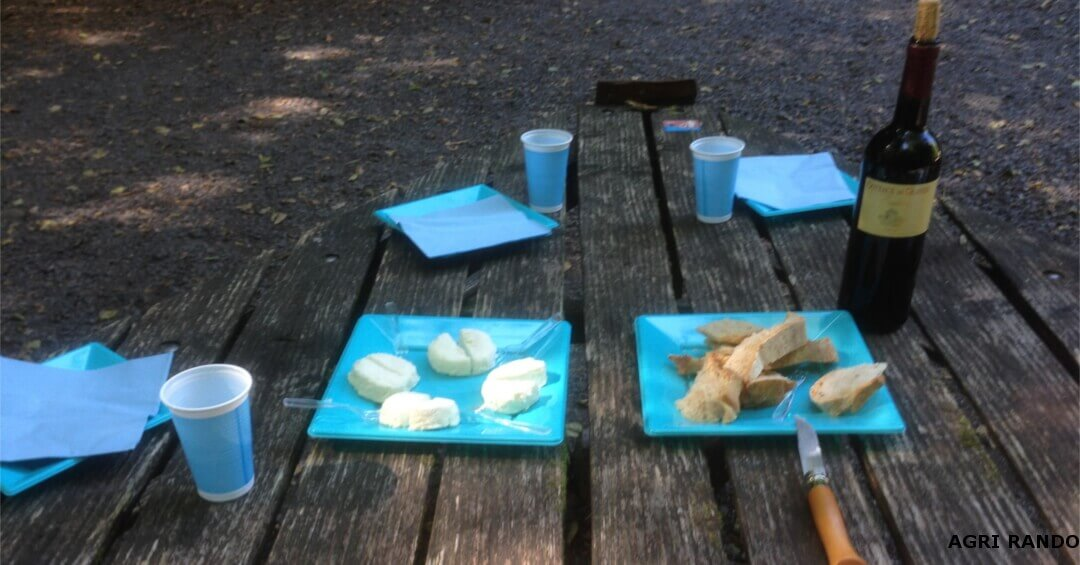 A small sampling snack of goat's cheese, accompanied by a glass of Dordogne valley wine